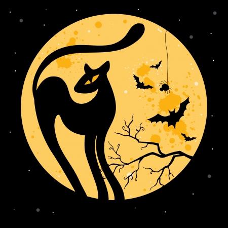 fruit bat: Vector Halloween illustration with black cat silhouette  Illustration