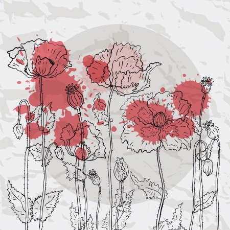 Poppies on crumpled paper background  Vector
