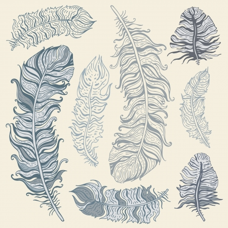 Vintage Feather set  Hand drawn illustration Stock Vector - 17333570