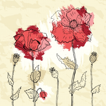 Red poppies on crumpled paper background  illustration Vector