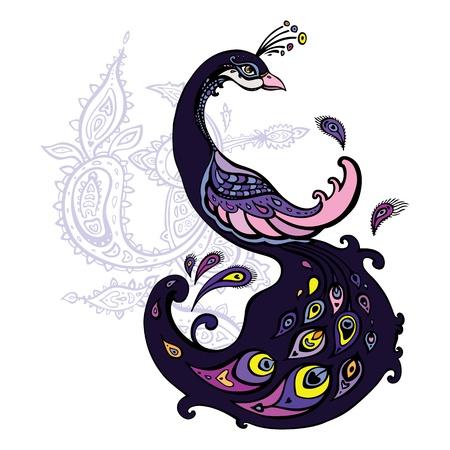 plumas de pavo real: Aislado Hermoso pavo real decorativo ilustración de dibujos animados