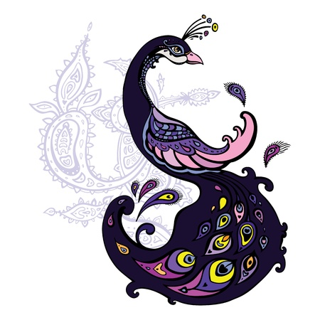piuma di pavone: Bella pavone decorativo fumetto illustrazione isolato Vettoriali