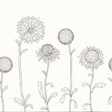 Hand drawn Sunflowers background. Seamless Vector illustration Stock Vector - 23983582