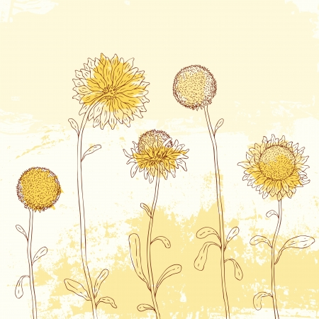 sunflower drawing: Yellow sunflowers on Watercolor background. Vector illustration