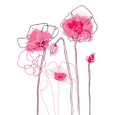 Red poppies on a white background. Vector illustration.