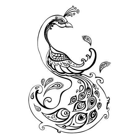 line drawings: Beautiful peacock  Decorative Hand drawn illustration isolated