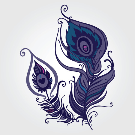 Beautiful peacock feather  Hand Drawn vector illustration Vector
