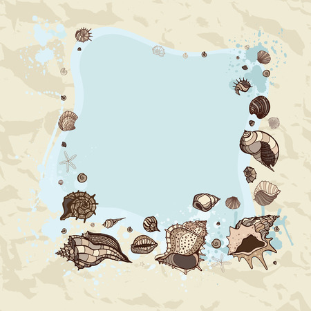 Frame of seashells  Summer background  Vector illustration  Vector