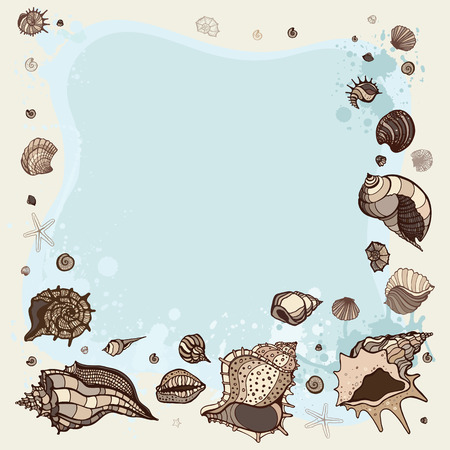 Frame of seashells. Summer background. Vector illustration. Vector