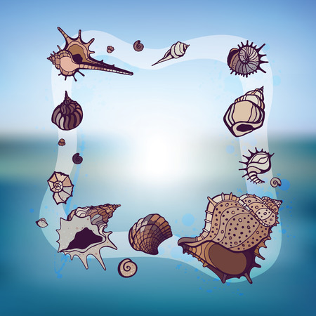 Frame of seashells.  Vector