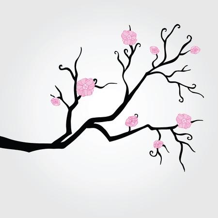 to bloom: Branch in bloom   Illustration