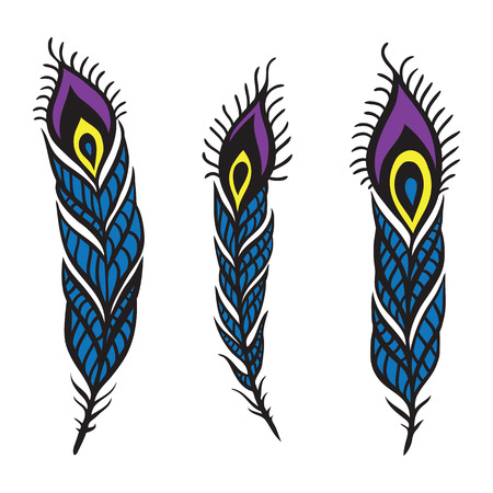 Peacock Feather set. Vector