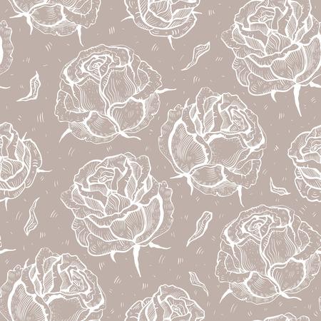 sch�ne blumen: Rosen Sch�ne Blumen Hintergrund.
