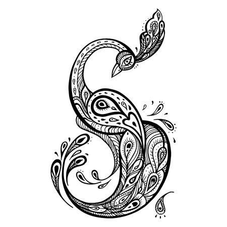 piuma bianca: Bella pavone. A mano decorativa disegnata illustrazione dettagliata. Vettoriali