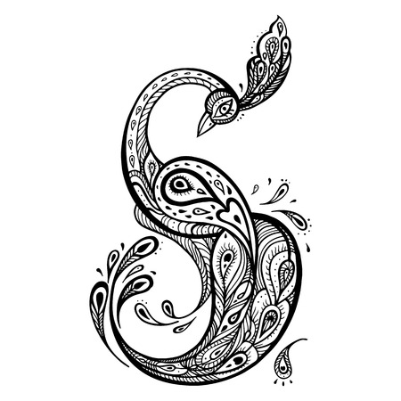 pavo real: Pavo real hermoso. Dibujado a mano ilustraci�n decorativa detallada.