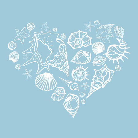 cockleshell: Heart of Sea shells. Seashells Hand drawn vector illustration