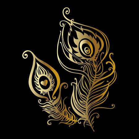 Belles plumes de paon. Hand Drawn illustration vectorielle Vecteurs