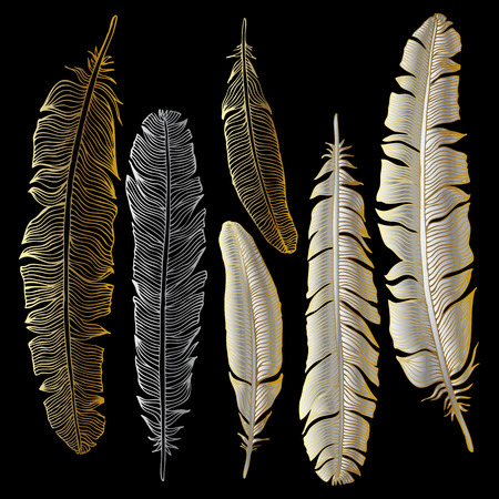 bird feathers: Vintage Feather silhouette. Vector set Hand-drawn illustration