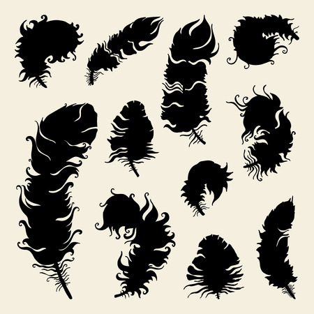 Vintage Feather silhouette. Vector set Hand-drawn illustration