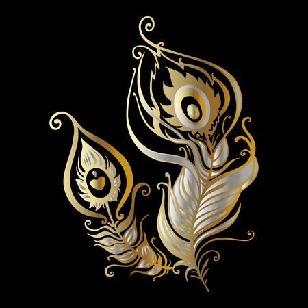 oiseau dessin: Belles plumes de paon. Hand Drawn illustration vectorielle