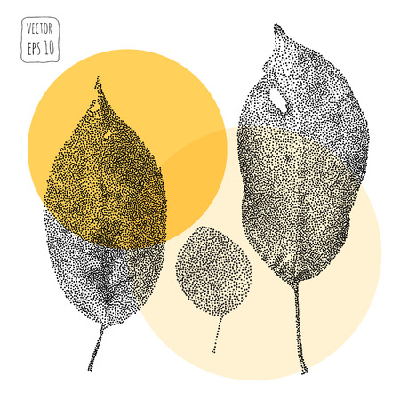 imprints: Leaves. Pattern with leaf. Hand Drawn vector Illustration