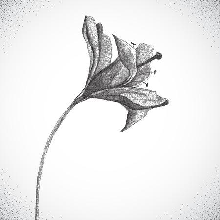 retro flowers: Flower. Black and white Dotwork. Vintage engraved illustration style