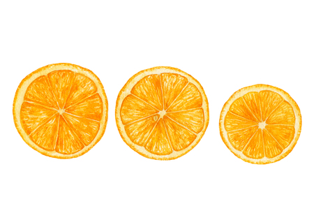 Watercolor juicy, ripe, fresh orange slices, Cut oranges isolated on white background. Archivio Fotografico