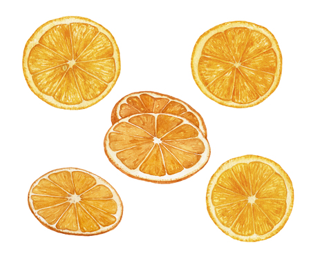 Watercolor juicy, fresh, ripe orange slices isolated on white background. Cut oranges.