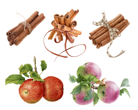 Watercolor cinnamon sticks isolated on white background.