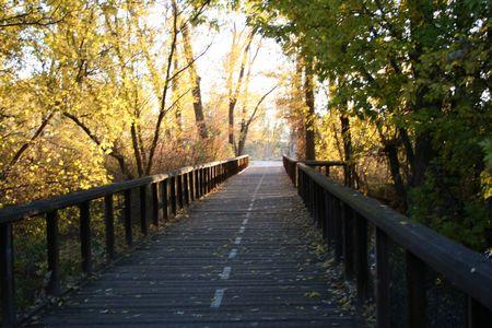trail running: Bike path on bridge surrounded by autumn foliage. Stock Photo
