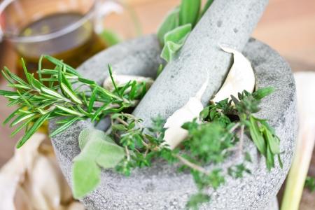 morter: erbe in mortaio