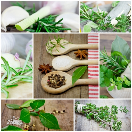 plant medicine: herb collection