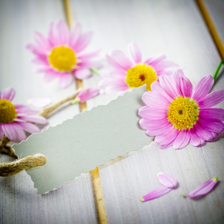 coupon with flowers photo