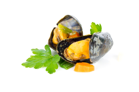 downloaded: mussels Stock Photo