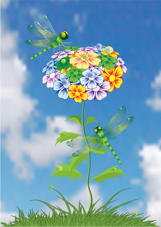 Summer flowers. Dragonfly. Vector