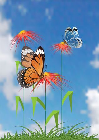 Batterfly and flowers. Vector