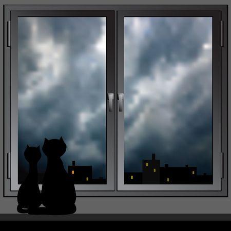Cats look at a night city.