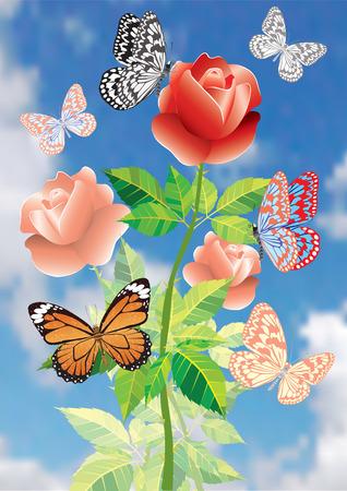 Een bloem is een roos.