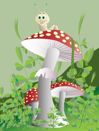 house fly: Mushroom.  Illustration