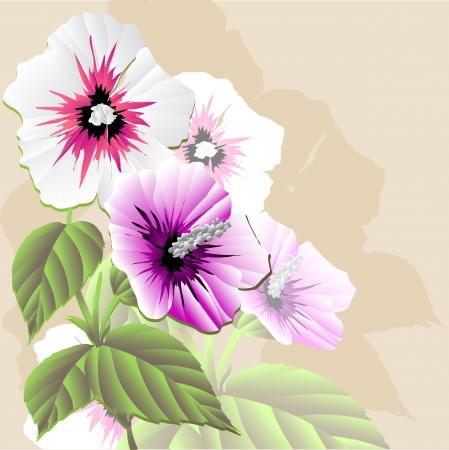 flor: Flor  vector illustration