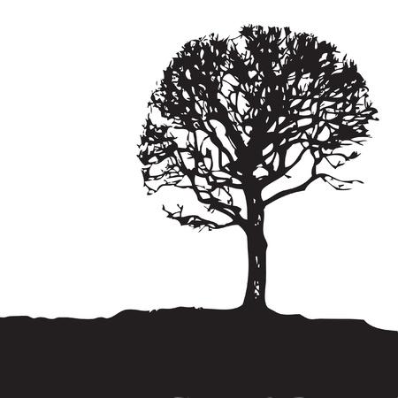 Tree silhouette illustration. Ilustração