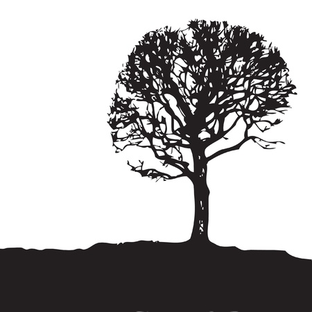 Tree silhouette illustration. Vector