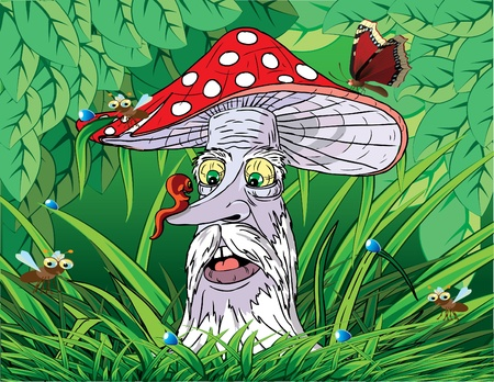 fairy toadstool: Mashroom. Vector illustration.