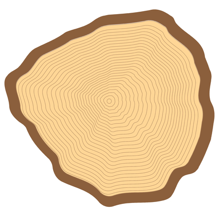 cut logs: Cut of a tree, visible annual rings.
