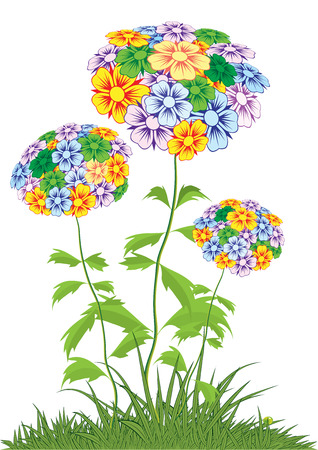 flowering: Colorful flowering plant summer day. Illustration