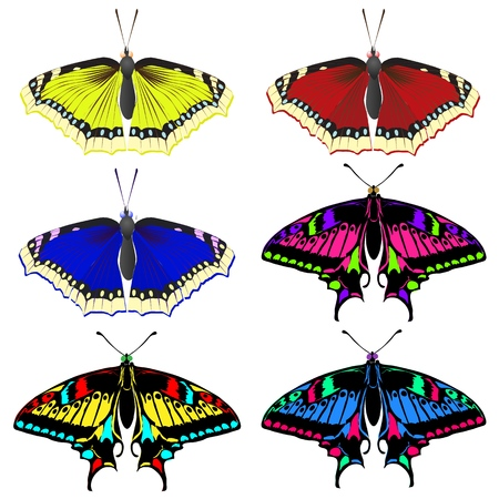 A collection of colorful beautiful butterflies. Beautiful flying insects. Vector illustration.