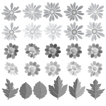 Flowers, leaves and butterflies in gray tone. A set for compiling kospozitsy on the theme of nature in monochrome tonality. Vector illustration