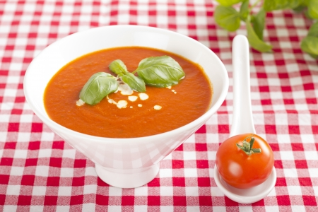 Tomato soup in white bowl on red and white checkered tablecloth
