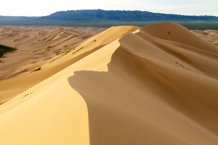 Huge dunes of the desert. Beautiful structures of sandy barkhans. Fine place for photographers and travelers. Mongolia.