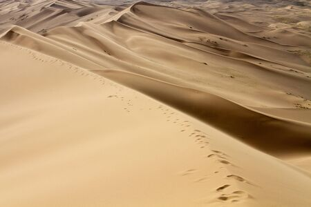 Enormi dune del deserto. Belle strutture di barkhan sabbiosi. Bel posto per fotografi e viaggiatori. Mongolia.